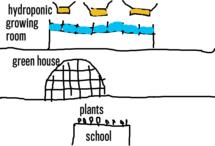 project : school plants
